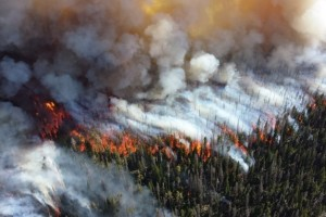 Photo credit: http://images.scienceworldreport.com/data/images/full/13050/wildfire.jpg?w=680